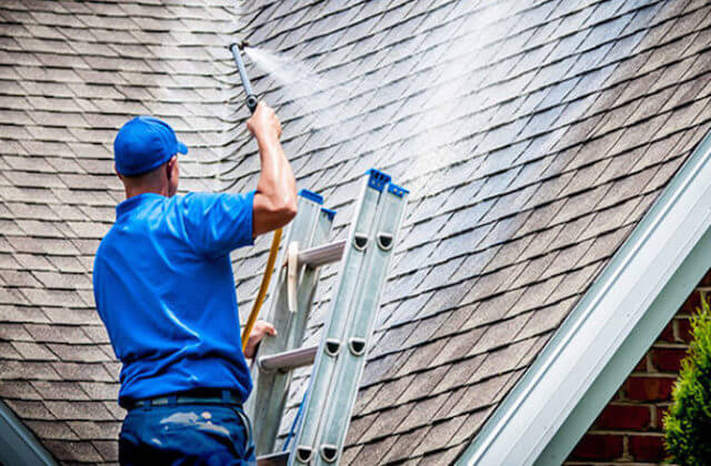 newton roof cleaning